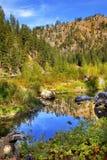 Rio azul Washington de Wenatchee da reflexão das cores verdes da queda Imagem de Stock Royalty Free
