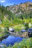 Rio azul Washington de Wenatchee da reflexão das cores verdes da queda Imagens de Stock