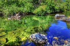 Rio azul Washington de Wenatchee da reflexão das cores verdes do verão Foto de Stock Royalty Free