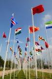 Rio 20 - bandiere dei paesi Immagini Stock Libere da Diritti