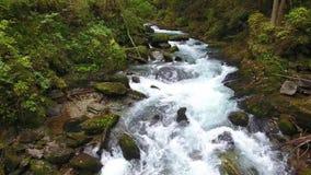 Rio bonito da cachoeira com lotes da água fresca nas montanhas em Áustria filme