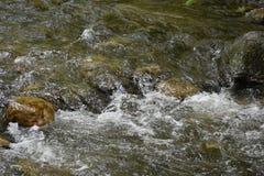 Rio bonito da montanha Fotos de Stock