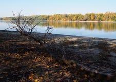 Rio bonito Danúbio imagem de stock