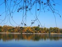 Rio bonito Danúbio imagens de stock royalty free