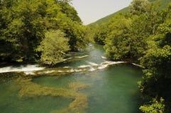 Rio bonito Una imagem de stock royalty free