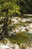Rio bonito Una fotografia de stock