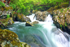 Rio branco Imagem de Stock