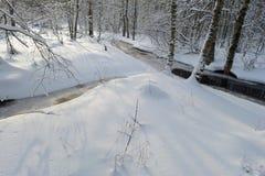Rio branco da floresta da neve do inverno no amanhecer Imagem de Stock Royalty Free