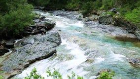 Rio Bujaruelo de Rio Ara no vale Pyrenees Huesca Aragon de Valle de Ordesa video estoque