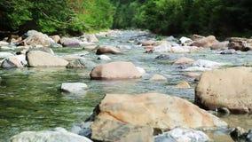 Rio Bujaruelo de Rio Ara no vale Pyrenees Huesca Aragon de Valle de Ordesa na Espanha video estoque