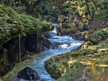 Rio Cahabon River, formando baías e cascatas numerosas, Guatemala fotos de stock royalty free