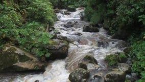 Rio Caldera-rivier stock videobeelden