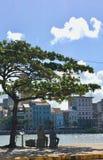 Rio Capeberibe i Recife Royaltyfri Fotografi