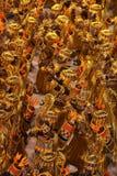 Rio Carnival Stock Photos