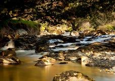 Rio carregado turfa no vale isolado de Galês fotografia de stock