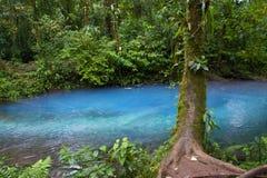 Rio Celeste. In Arenal, Costa Rica Stock Photography