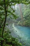 Rio Celeste blue acid water, Costa Rica. Rio Celeste blue acid water in Costa Rica Stock Photos
