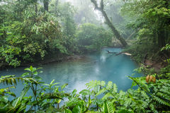 Rio Celeste blue acid water, Costa Rica. Rio Celeste blue acid water in Costa Rica Stock Photo