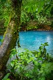 Rio Celeste a blue volcanic river - Arenal day trip   Views around Costa Rica. Rio Celeste a blue volcanic river  Views around  Costa Rica - Central America Royalty Free Stock Photo