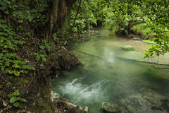 Rio Celeste-Borbollone Royalty Free Stock Photo