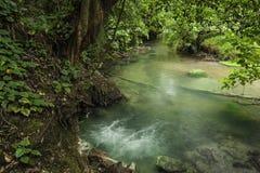 Rio Celeste-Borbollone. Borbollone or bubbling hot spring in the rio Celeste in Costa Rica Royalty Free Stock Photo
