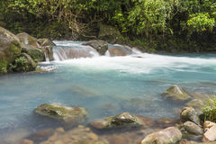 Rio Celeste Clear Blue Waters. The cerulean blue waters of the Rio Celeste in Volcan Tenorio National Park, Costa Rica Stock Images