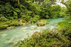 Rio Celeste Costa Rica. Beautiful rio celeste flows through the Tenorio National Park in Costa Rica Stock Photo