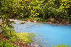 Rio Celeste, Costa Rica. Rio Celeste River in Terino Volcano National Park, Costa Rica, with milky-blue water because of the minerals dissolved in it Royalty Free Stock Photography