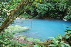Rio Celeste em Costa Rica Imagem de Stock
