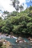 Rio Celeste River Stock Photography