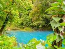 Rio Celeste. Tenorio volcano national park, Costa Rica Stock Photography