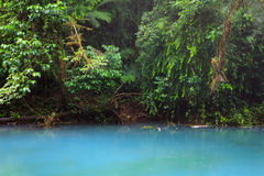 Rio celeste and vegetation Stock Photos