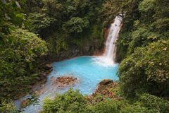 Rio Celeste Waterfall, Costa Rica Stock Photography