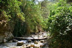 Rio Chillar, Nerja, Malaga. The Chillar River is a short coastal river in the south of Spain, located in the eastern part of the province of Malaga, between the royalty free stock photo