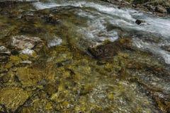 Rio claro e rápido da montanha Foto de Stock Royalty Free