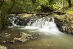 Rio com algumas rochas e uma exposição longa da cachoeira pequena Foto de Stock
