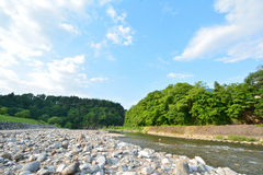 Rio com floresta e o céu azul Imagens de Stock Royalty Free