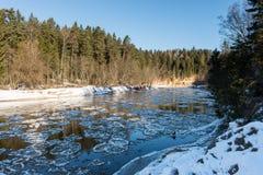 Rio congelado no inverno Imagens de Stock