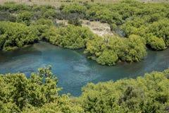 Rio da água azul na paisagem verde da floresta Fotografia de Stock