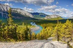 Rio da curva, azarentos, Banff, Canadá Imagens de Stock