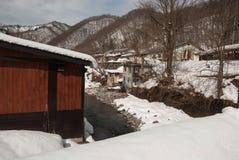Rio da floresta do inverno Foto de Stock