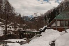 Rio da floresta do inverno Imagem de Stock