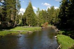 Rio da floresta no parque nacional de Yellowstone Fotografia de Stock