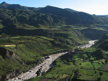 Rio da garganta de Colca Imagem de Stock