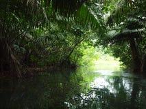 Rio da Guatemala Foto de Stock Royalty Free