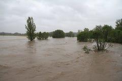 Rio da inundação Fotografia de Stock Royalty Free