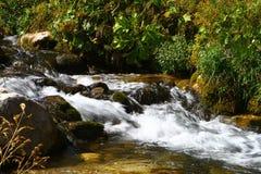 Rio da montanha da água de mola e o Stony Creek bonito em Cáucaso norte foto natural da paisagem da montanha imagens de stock