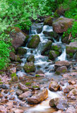 Rio da montanha Água rápida do córrego Rússia Ural fotos de stock royalty free