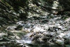 Rio da montanha imagem de stock
