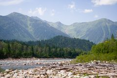 Rio da montanha fotos de stock